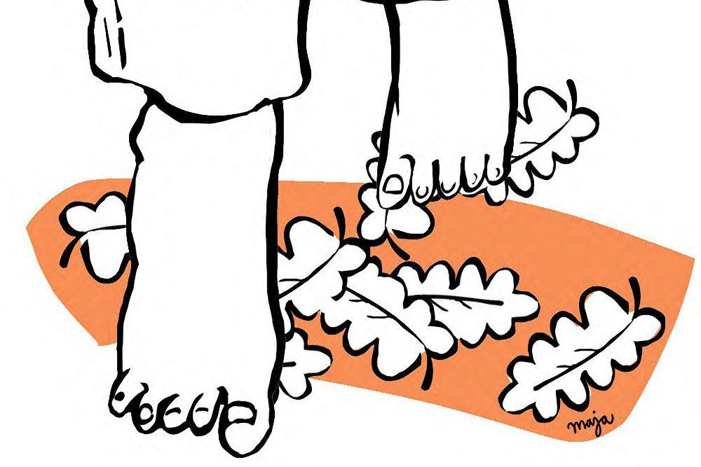 höstfot-zonterapi-illustration-maja-larsson