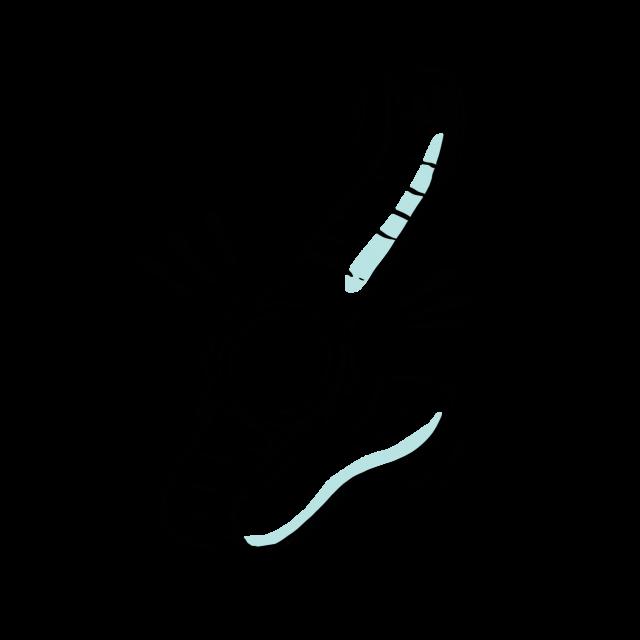Träning-1b-illustration-maja-larsson